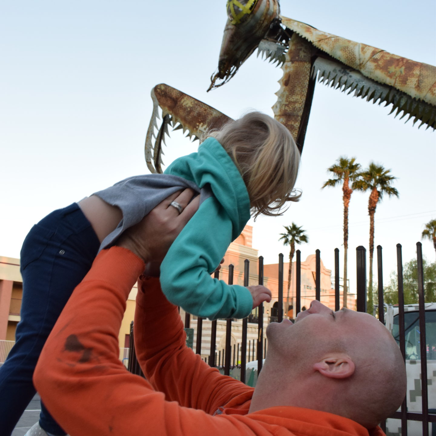 "Visiting the ""Grasshopper"" Praying Mantis in Vegas"